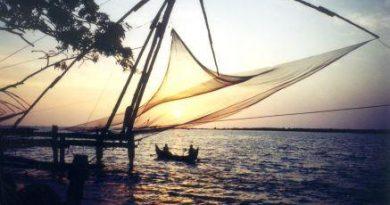 Population of Kochi